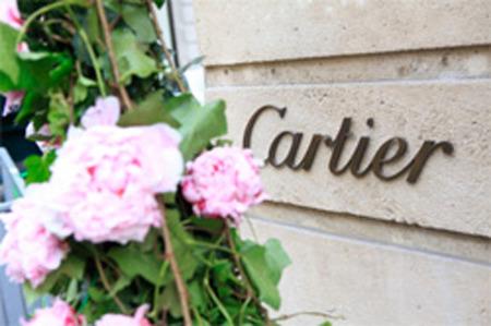 Peonias a la entrada Cartier