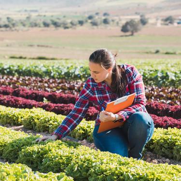 Casi el 10 % de la superficie agraria utilizada de España es ya ecológica (y somos el país líder en Europa)