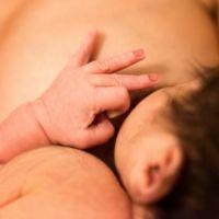 La leche materna contiene biomoléculas que combaten la inflamación