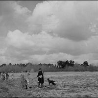 Añorando estrenos: 'La regla del juego' de Jean Renoir