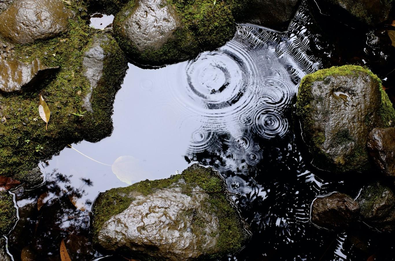 Está lloviendo plástico: cada vez se encuentran más fibras de microplásticos en muestras de lluvía