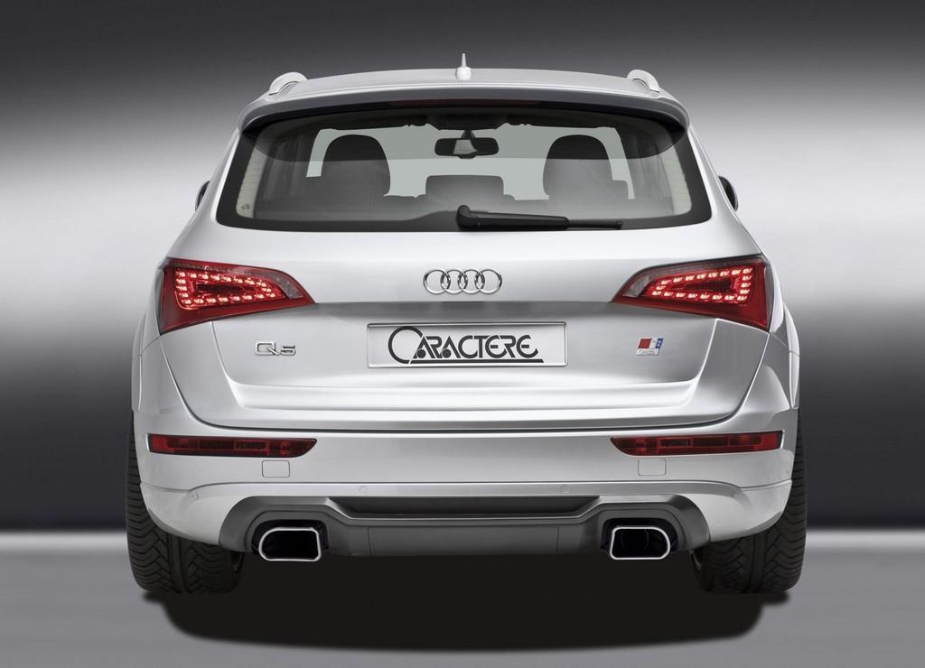 Foto de Audi Q5 Caractere (11/12)