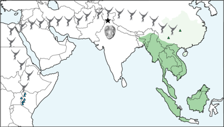 Map Of Gibbon Migration