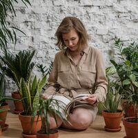 """La """"eco-culpa"""", o por qué hemos llenado nuestra casa de plantas y llevamos estampados florales"""
