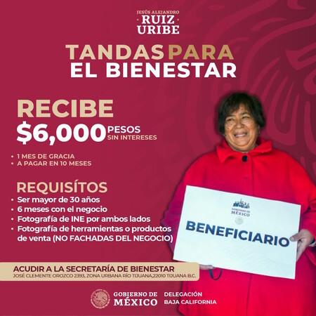 Tandas Para Bienestar Apoyo Gobierno Mexico Pequeno Negocio