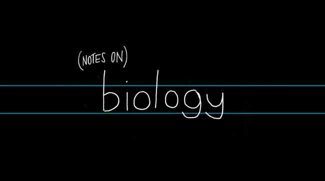 """""""(Notes on) Biology"""", posiblemente, uno de los mejores stop motion del momento"""