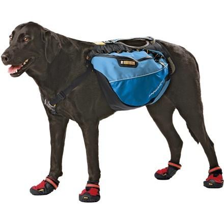 Mochila canina