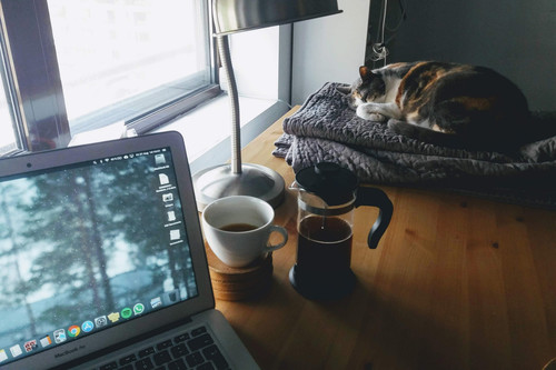 Las mejores webs contra el aburrimiento para pasar los días de encierro y escapar de las redes sociales