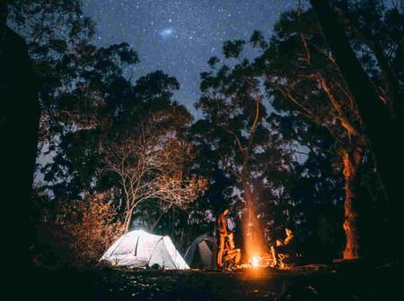 Noche Estrelladaok