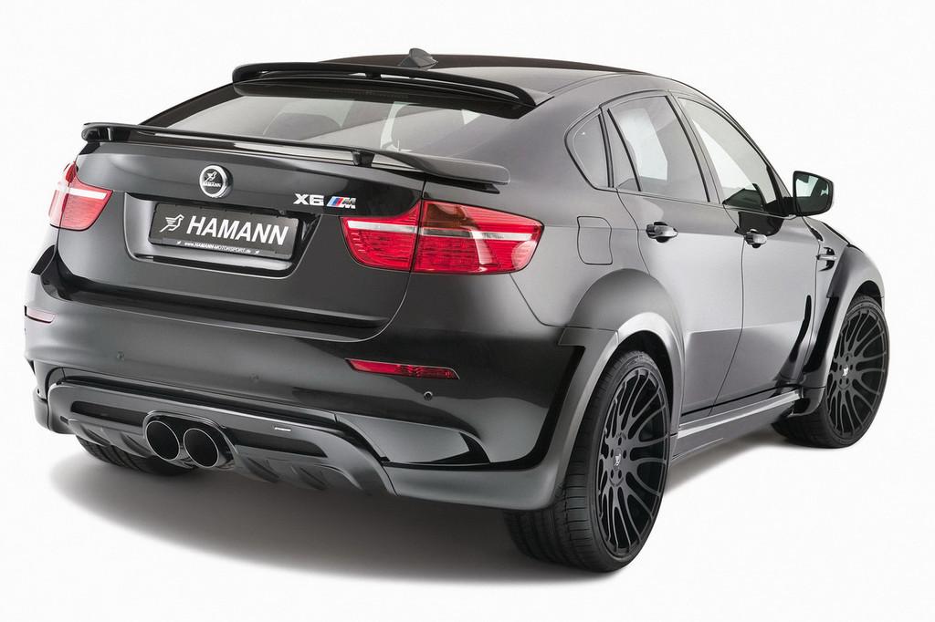 Foto de Hamann BMW X6 Tycoon EVO M (7/19)