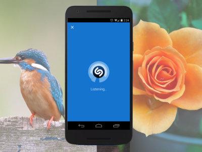 La identificación con el móvil más allá de Shazam: de las canciones a las aves pasando por las plantas