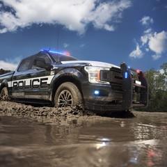 Foto 7 de 12 de la galería 2018-ford-f-150-police-responder en Motorpasión