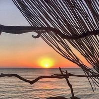 Si tu plan perfecto en vacaciones es desconectar, este hotel eco-friendly en pleno Caribe puede ser tu destino perfecto