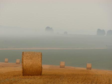 Trucos Consejos Hacer Fotos Niebla Neblina 13