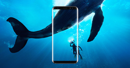 Galaxy S8 Share Image