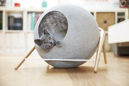 Los complementos más bonitos de estética nórdica y minimalista para tu dulce gatito