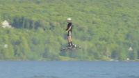 Este vídeo no está trucado: un patín volador ha pulverizado el récord de distancia con casi 300 metros