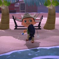 Animal Crossing: New Horizons: lista con todos los peces de enero