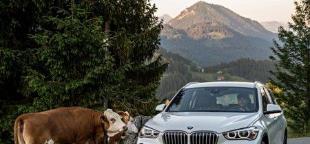 El BMW X1 aumentará la familia de híbridos enchufables en 2016