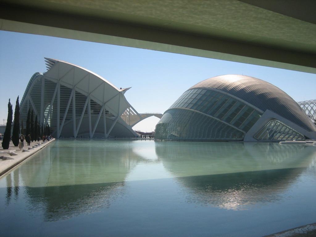Foto de Ciudad de las Artes y las Ciencias (12/21)