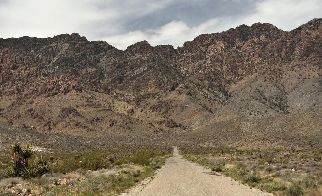 Desierto Mojave