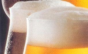 La Biblia del saber beber cerveza