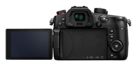 Panasonic Lumix Gh5s 02b