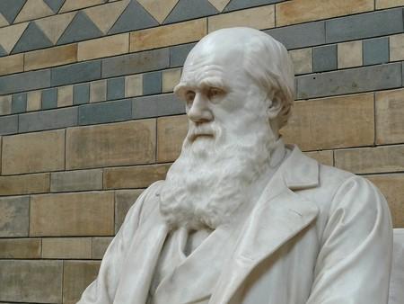 No importa si no entiendes la evolución para creer en ella