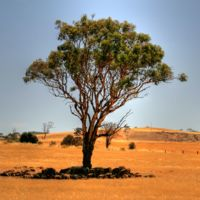 Australia, paraíso laboral... o no
