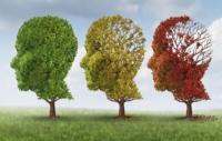Día Mundial del Alzheimer: lo prevenimos desde ya haciendo ejercicio