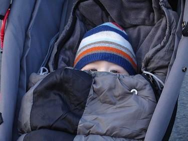 La equinácea no parece curar los resfriados