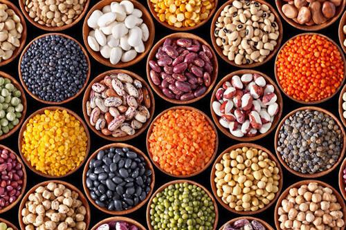 Las siete legumbres con más proteínas (y 33 recetas fáciles y rápidas para incluirlas en tu dieta)