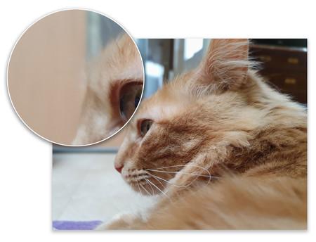 Samsung Galaxy S10plus Retrato Detalle