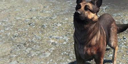 Fallout 4 nos muestra a Dogmeat, el famoso perro que nos acompañará en el juego