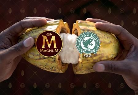 Paletas heladas Magnum hechas con chocolate sustentable