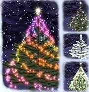 Preparando la Navidad, el árbol