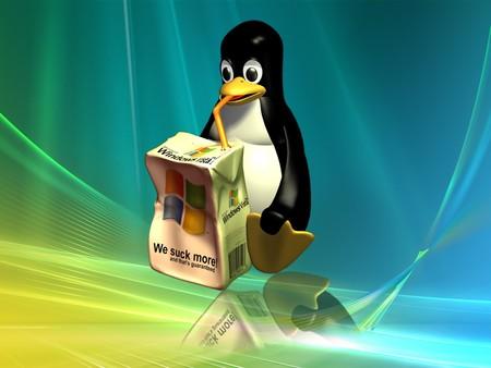 Una petición online de la Free Software Foundation pretende convencer a Microsoft de que libere Windows 7 como código abierto