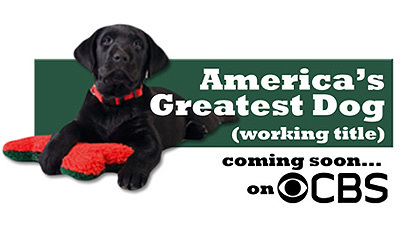 Un reality show... ¡protagonizado por perros!