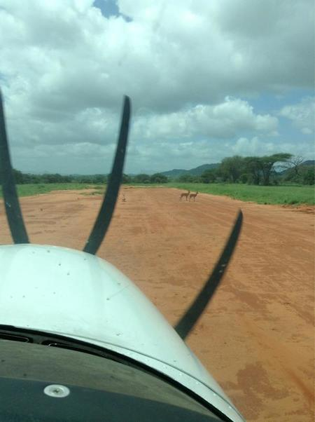 Memorias de África con Briatore