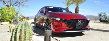 Mazda 3 2019, to test it: the theory behind the biggest decision needed