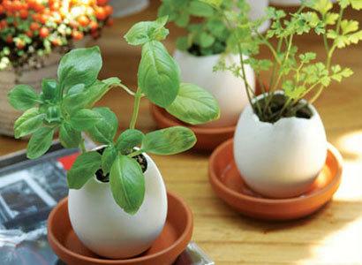 Eggling, una bonita idea desde Japón