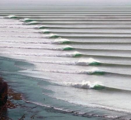 Chicama Surf 8 489x445