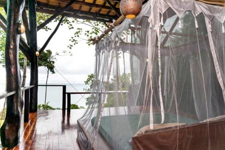Casa Arbol Costa Rica4