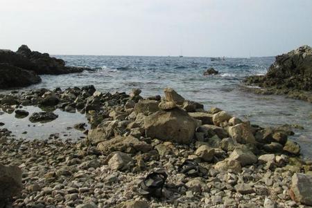 playa de rovinj.jpg