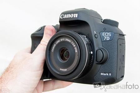 Canon 7d Markii Hands