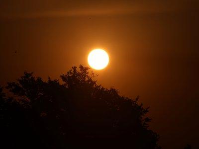Así es como tu portátil sufre cuando lo dejas al sol del verano y te olvidas de él
