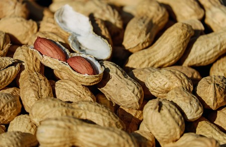 Nuts 1736520 1920