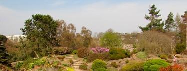 Visita al Jardín Botánico de Edimburgo, un edén con vistas