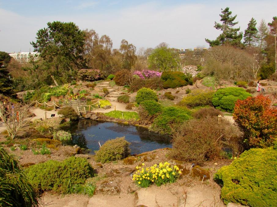 Visita al jard n bot nico de edimburgo un ed n con vistas for Jardin botanico edimburgo