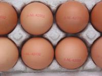 Los aminoácidos y donde encontrarlos (XIV)